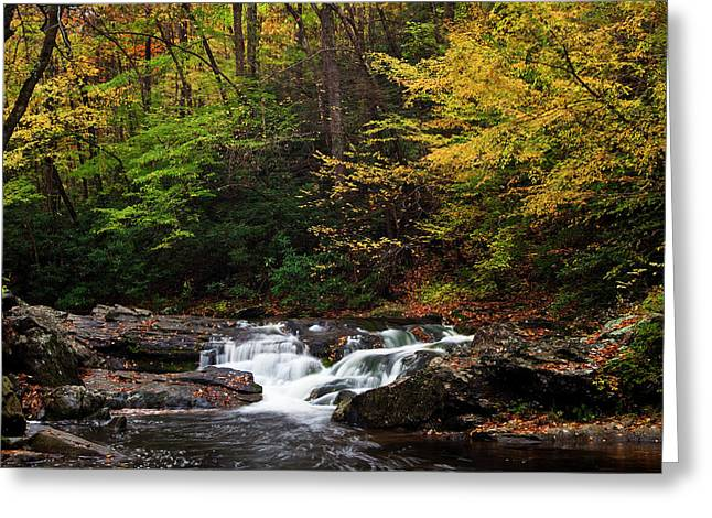 Tennessee River Greeting Cards - Autumn Rush Greeting Card by Andrew Soundarajan