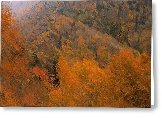 Windy Mixed Media Greeting Cards - Autumn Rush Greeting Card by Dan Sproul