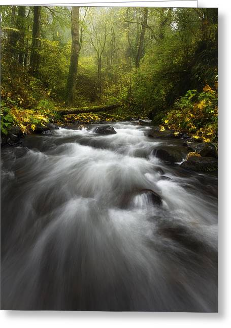 Columbia River Greeting Cards - Autumn Rush Greeting Card by Darren  White