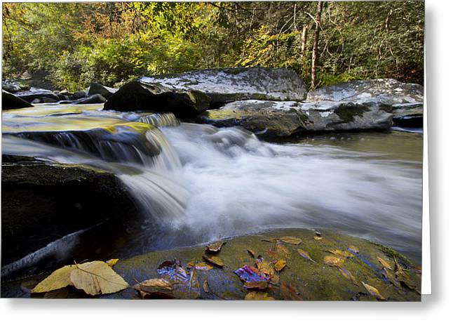 Rivers In The Fall Photographs Greeting Cards - Autumn Rushing Water Greeting Card by Debra and Dave Vanderlaan