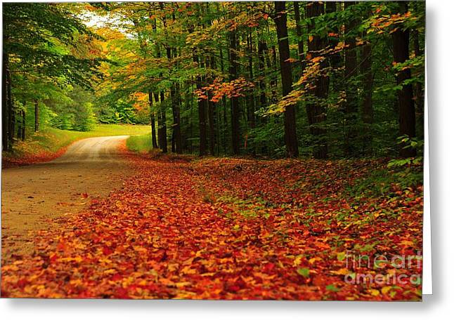 Country Road Greeting Cards - Autumn Rustle Greeting Card by Terri Gostola