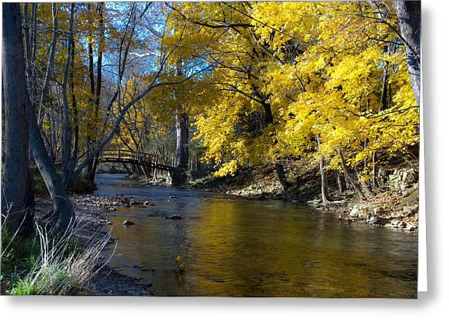Autumn Scenes Greeting Cards - Autumn Scene at Valley Forge Greeting Card by Bill Cannon