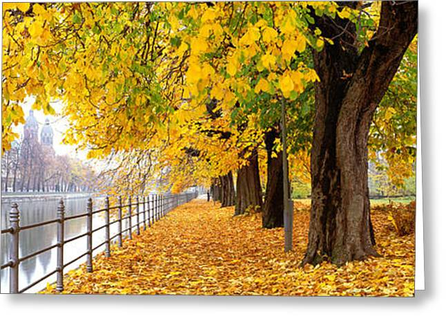 Best Sellers -  - Overcast Day Greeting Cards - Autumn Scene Munich Germany Greeting Card by Panoramic Images