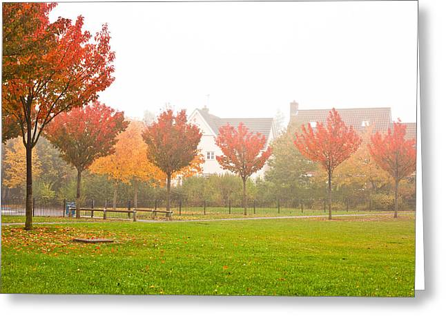 Foggy Day Greeting Cards - Autumn scene Greeting Card by Tom Gowanlock