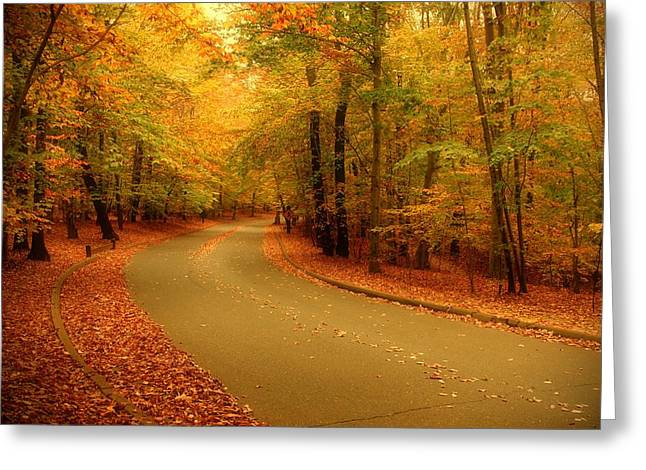 Photos Of Autumn Digital Greeting Cards - Autumn Serenity - Holmdel Park  Greeting Card by Angie Tirado