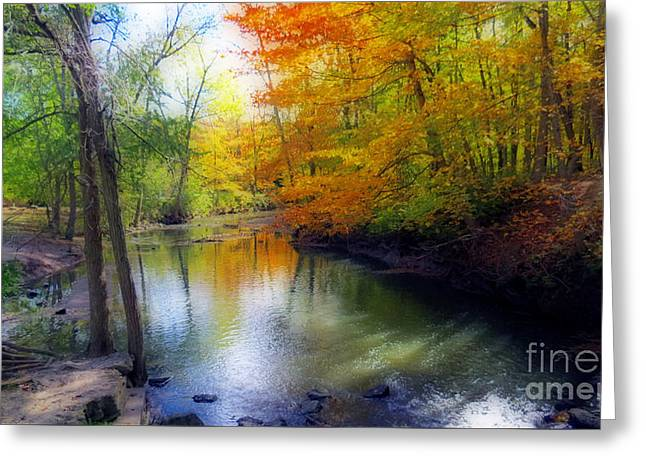 Petrifying Springs Greeting Cards - Autumn Serenity  Greeting Card by Kay Novy