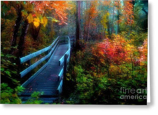 Naramata Greeting Cards - Autumn Serenity Greeting Card by Tara Turner