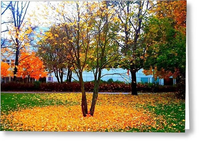 Autumn Series 1.1 Greeting Card by Derya  Aktas