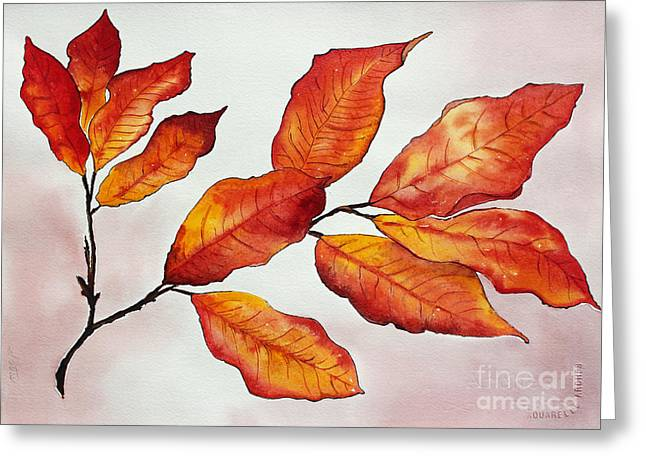 Painted Details Drawings Greeting Cards - Autumn Greeting Card by Shannan Peters