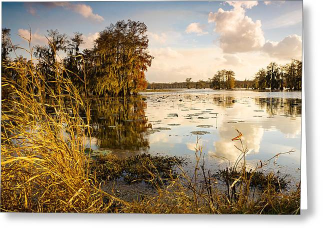 Autumn Sky In Lake Martin Greeting Card by Ellie Teramoto
