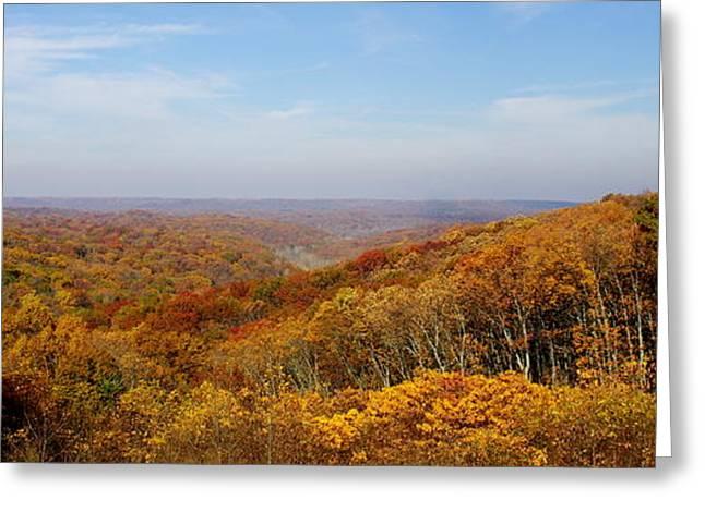 Indiana Autumn Greeting Cards - Autumn Splendor Greeting Card by Kitrina Arbuckle