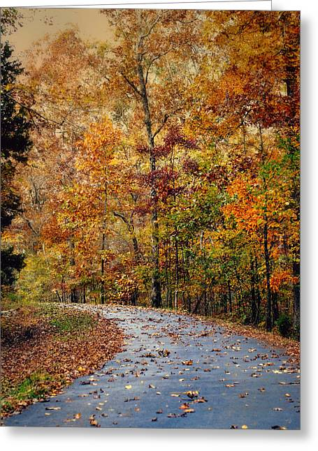 Autumn Splash - Fall Landscape Greeting Card by Jai Johnson