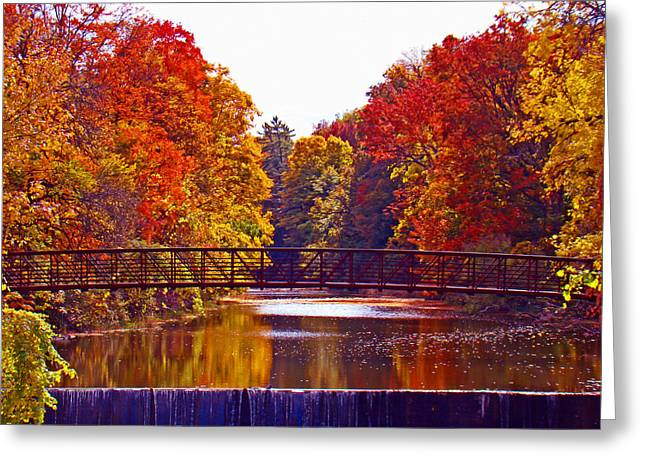 Tress Greeting Cards - Autumn Splendor Greeting Card by Al Bourassa