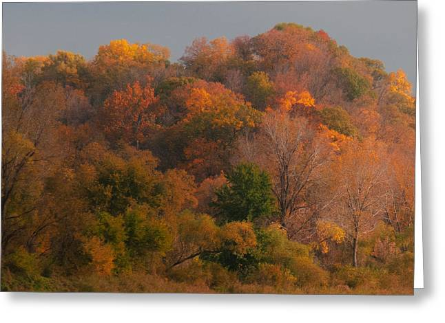 Earth Tone Photographs Greeting Cards - Autumn Splendor Greeting Card by Don Spenner