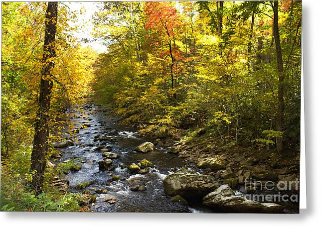 Gatlinburg Tennessee Greeting Cards - Autumn Splendor Greeting Card by Lena Auxier