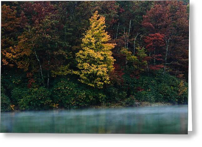 Orchard Greeting Cards - Autumn Splendor Greeting Card by Shane Holsclaw