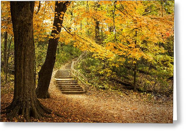 Autumn Stairs Greeting Card by Scott Norris