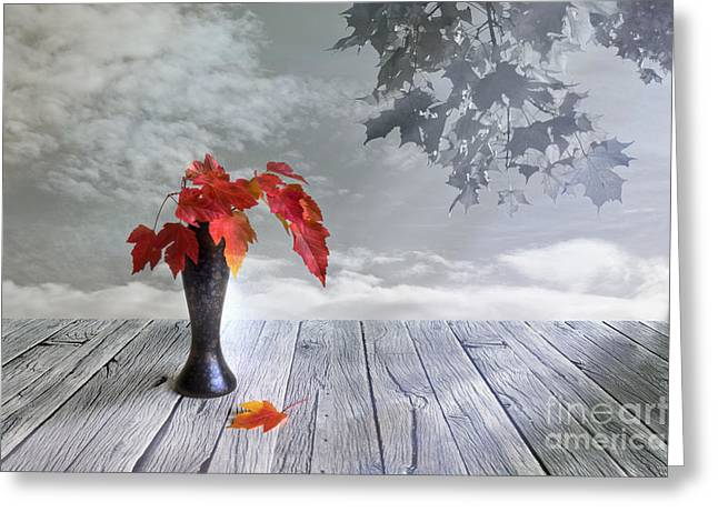 Multicolored Digital Greeting Cards - Autumn still life Greeting Card by Veikko Suikkanen