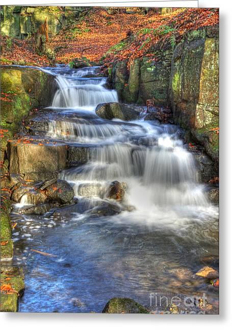 David Birchall Greeting Cards - Autumn Stream Greeting Card by David Birchall