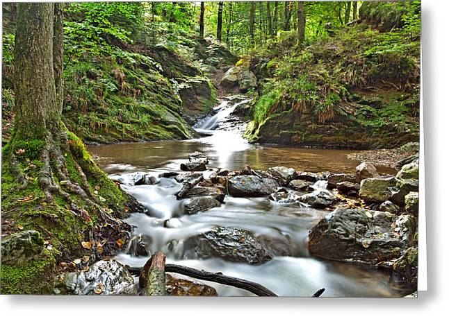 Fall Scenes Greeting Cards - Autumn Stream Greeting Card by Dirk Ercken