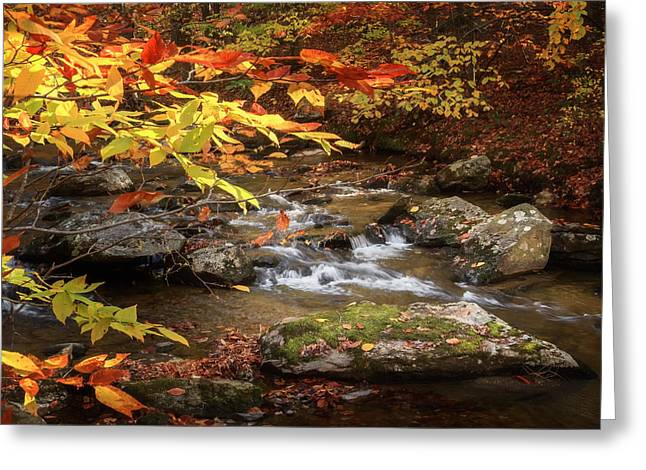 Kent Falls State Park Greeting Cards - Autumn Stream Square Greeting Card by Bill  Wakeley
