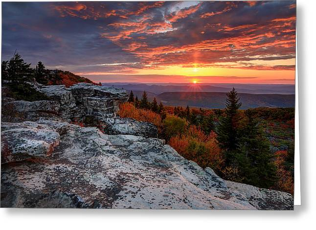 Dolly Sods Wilderness Greeting Cards - Autumn sunrise at Dolly Sods Greeting Card by Jaki Miller