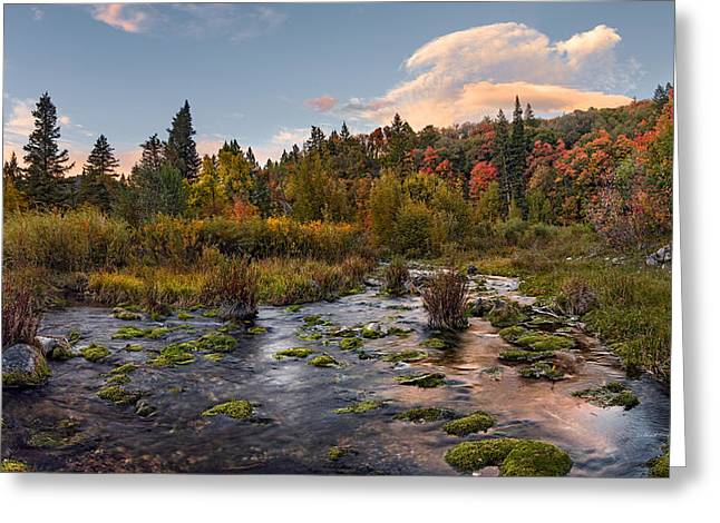 Autumn Sunset Greeting Card by Leland D Howard