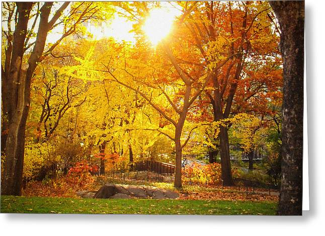 Nyc Photo Greeting Cards - Autumn Sunset - New York City - Central Park Greeting Card by Vivienne Gucwa
