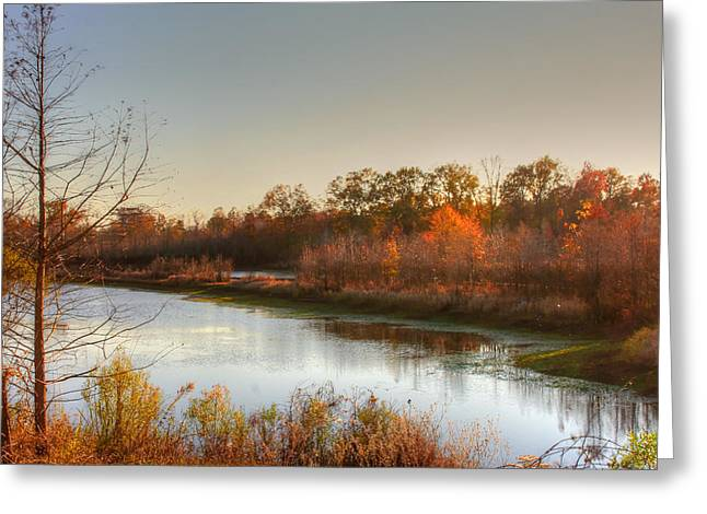 Stagnant Greeting Cards - Autumn Sunset Reflection Greeting Card by Ester  Rogers