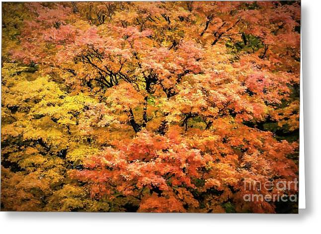 Autumn Colored Quilts Greeting Cards - Autumn Tapestry Greeting Card by Henry Kowalski