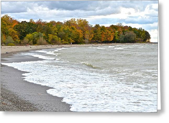 Willow Lake Greeting Cards - Autumn Tide Greeting Card by Frozen in Time Fine Art Photography