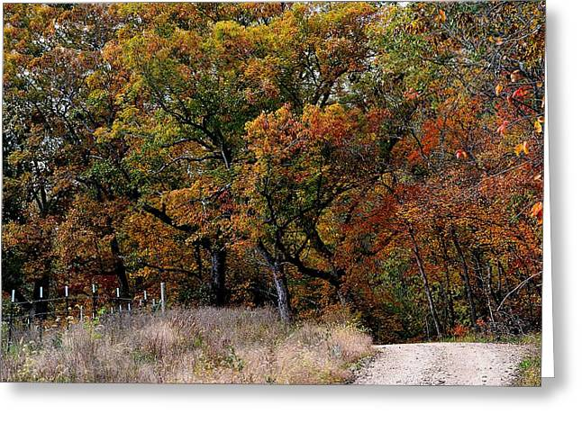 Fall Scenes Greeting Cards - Autumn Trail 2 Greeting Card by Deena Stoddard