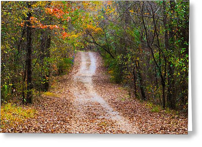 Jogging Greeting Cards - Autumn Trail Greeting Card by Parker Cunningham