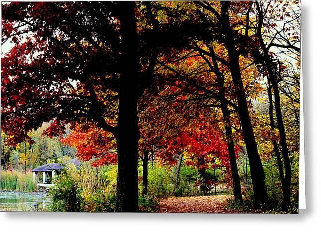 Herrick Lake Greeting Cards - Autumn Trail Greeting Card by Rosanne Jordan
