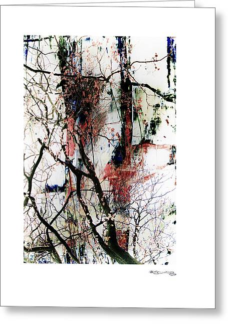 Xoanxo Cespon Greeting Cards - Autumn Tree Composition 3 Greeting Card by Xoanxo Cespon