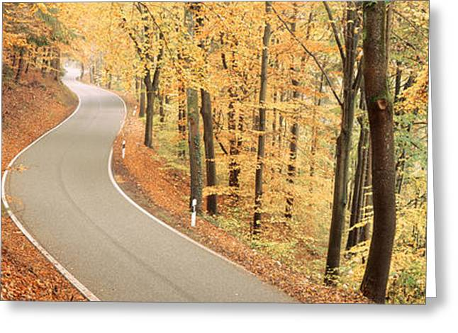 Rural Road Greeting Cards - Autumn Trees Along A Road, Germany Greeting Card by Panoramic Images