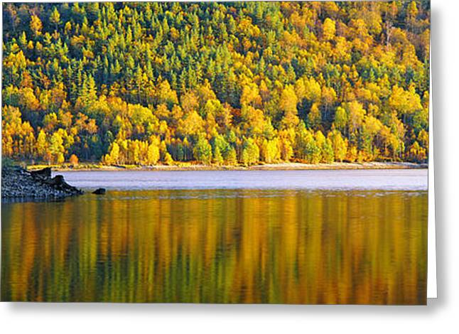 Reflections In River Greeting Cards - Autumn Trees At Loch Beinn A Mheadhoin Greeting Card by Panoramic Images