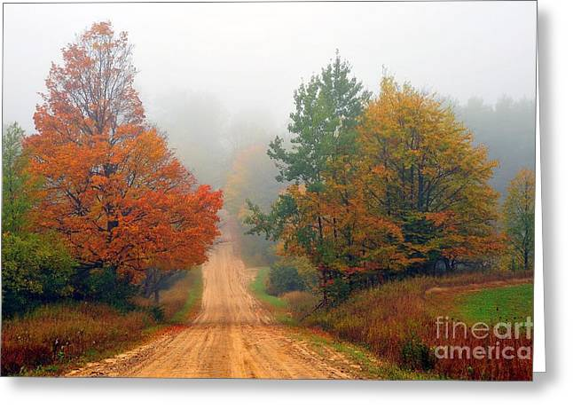 Fall Trees Greeting Cards - Autumn Trees in Foggy Landscape Greeting Card by Terri Gostola