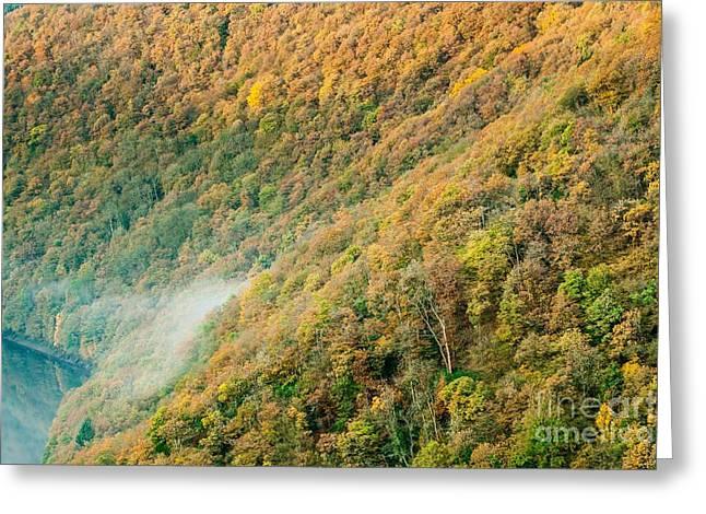 Deutschland Greeting Cards - Autumn Trees Greeting Card by Maciej Markiewicz