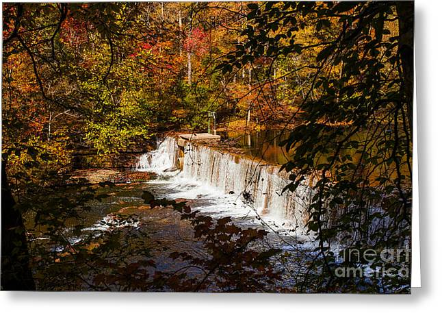 Tree Leaf On Water Greeting Cards - Autumn Trees on River Waterfalls fine art prints as gift for the Holidays  Greeting Card by Jerry Cowart