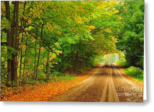 Rustic Greeting Cards - Autumn Tunnel Greeting Card by Terri Gostola