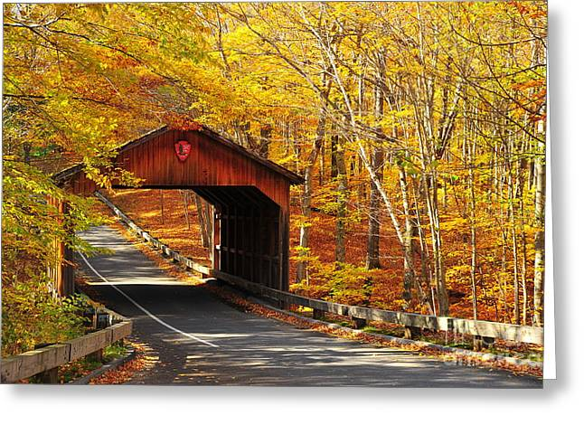 Autumn View Of Covered Bridge At Sleeping Bear National Lakeshore Greeting Card by Terri Gostola