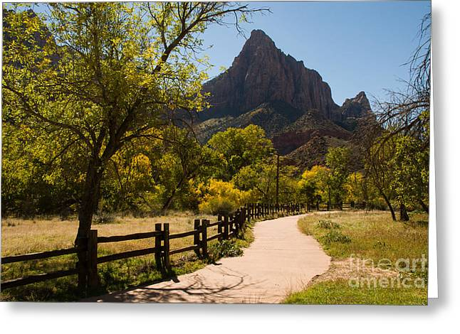 Geobob Greeting Cards - Autumn Views on the Parus Trail in the Lower Zion Canyon Utah Greeting Card by Robert Ford