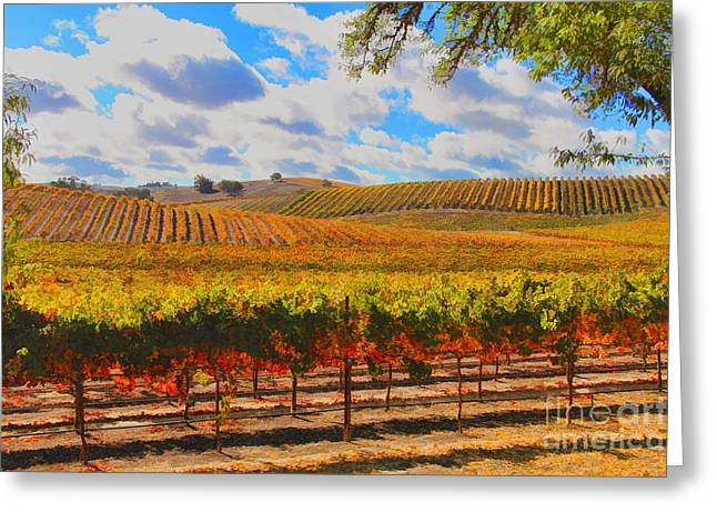 Fall Vineyard Greeting Cards - Autumn Vineyard Greeting Card by Stephanie Laird
