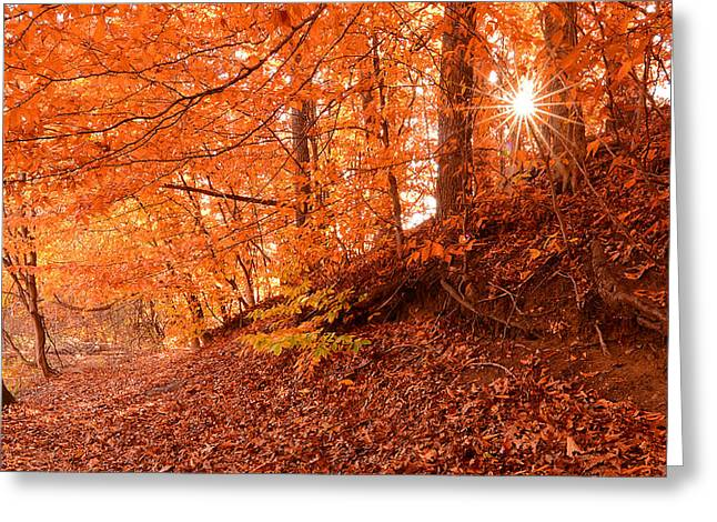 Autumn Art Greeting Cards - Autumn Walk Greeting Card by Lourry Legarde