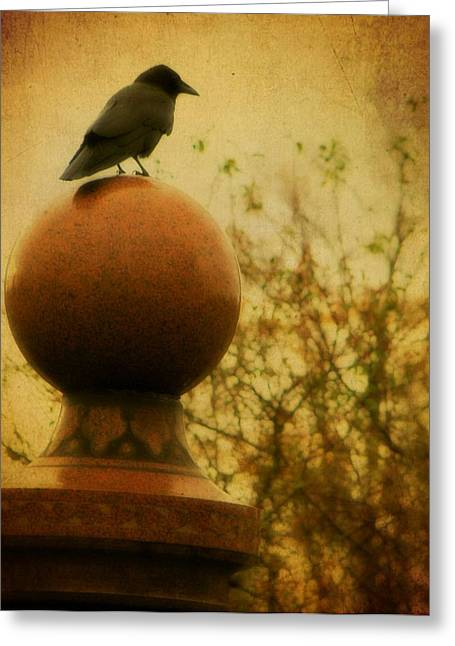 Ravens In Graveyard Greeting Cards - Autumn Wash Greeting Card by Gothicolors Donna Snyder