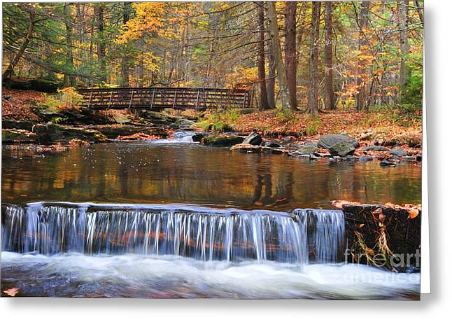 Autumn Scenes Greeting Cards - Autumn Waterfalls Greeting Card by Paul Ward