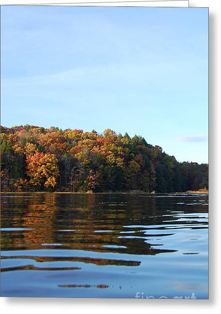Indiana Autumn Greeting Cards - Autumn Waterline Greeting Card by Megan Stahl