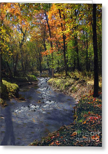 Babbling Greeting Cards - Autumn Whisper Greeting Card by Cedric Hampton