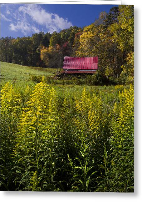 Tennessee Barn Greeting Cards - Autumn Wildflowers Greeting Card by Debra and Dave Vanderlaan